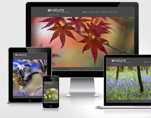 Site Wordpress cnature.fr et photothèque en ligne