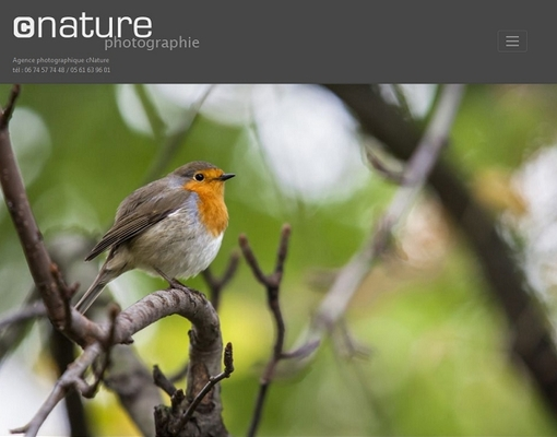 Site internet Wordpress de cNature.fr